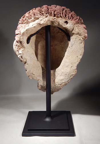 Romano Egyptian Stucco Plaster Head Custom Display Stand (back).