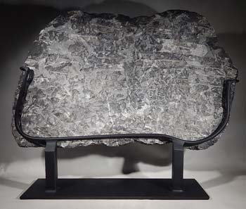 'Orthoceras' fossil cluster Custom Display Stand (back).