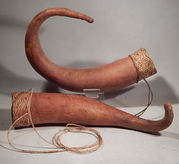 Papua New Guinea Penis Gourds Sheath