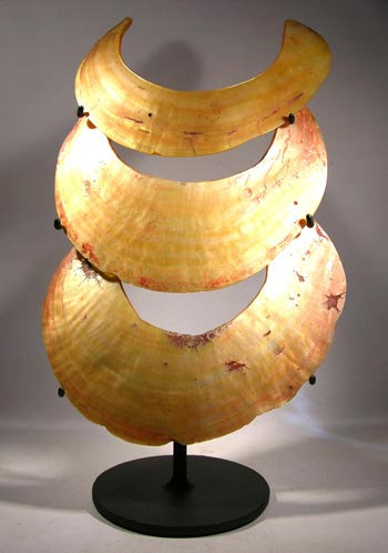 Papua New Guinea Kina Shell Custom Display Stand - front