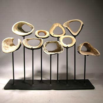 Whale Bones Custom Display Stand